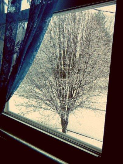 WinterWhiteWhimsy1