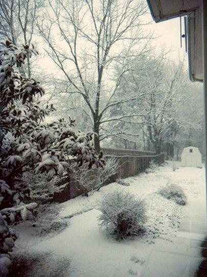 WinterWhiteWhimsy2