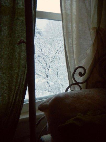 WinterWhiteWhimsy4