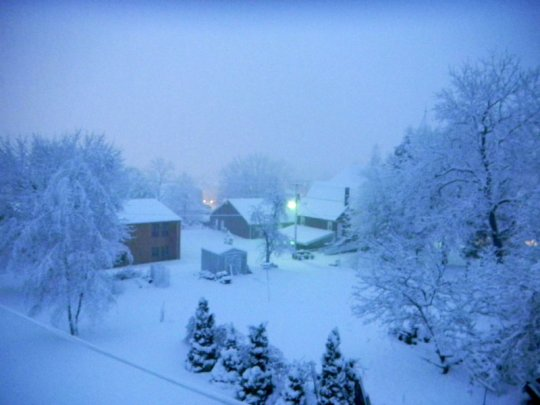 WinterWhiteWhimsy5