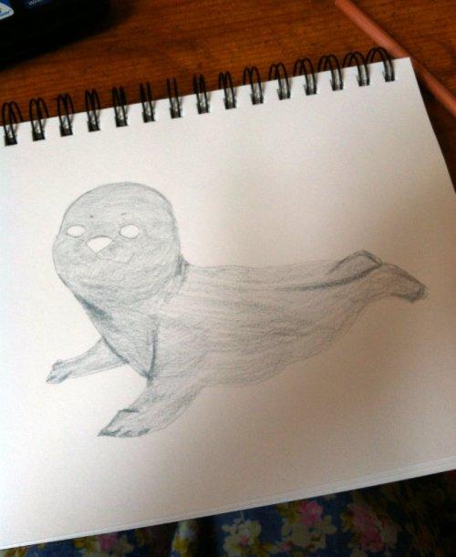 Seal Sketch 1