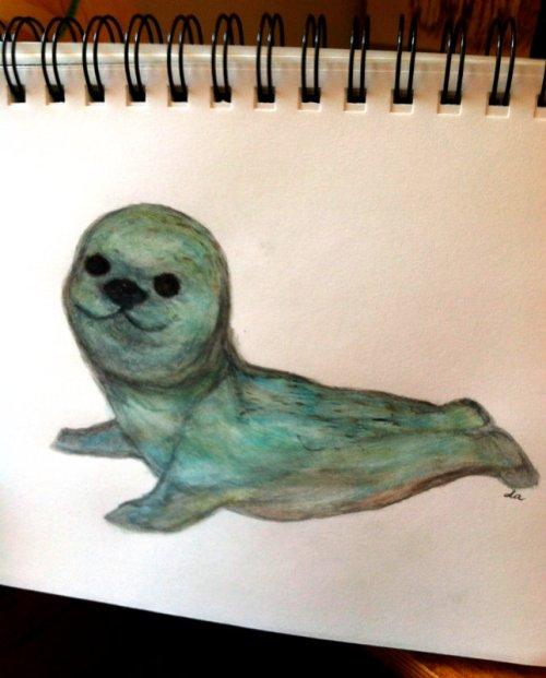 Seal Sketch 3