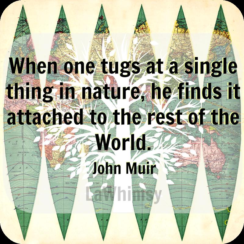 John Muir Earth Day Quote via LaWhimsy