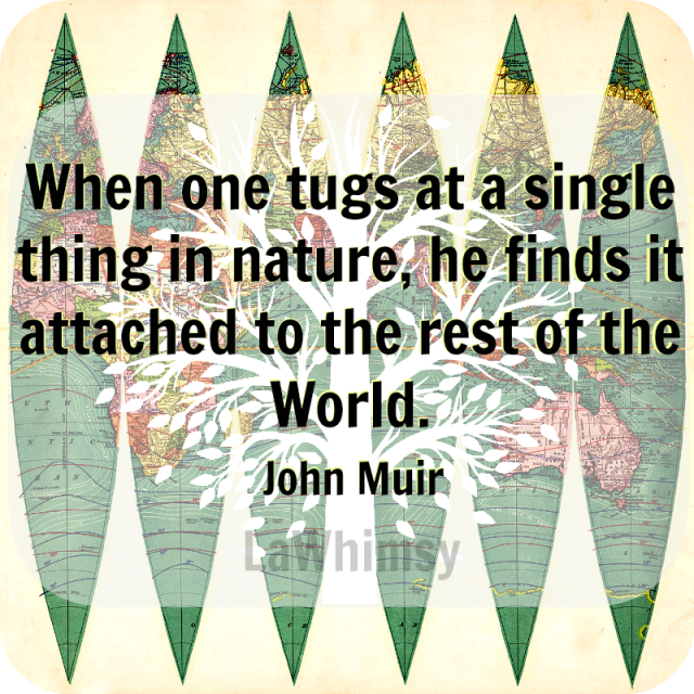 John Muir Earth Day Quote via LaWhimsy