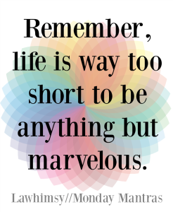 Remember, life is way too short to be anything but marvelous. Soul Wisdom quote Monday Mantra 94 via LaWhimsy