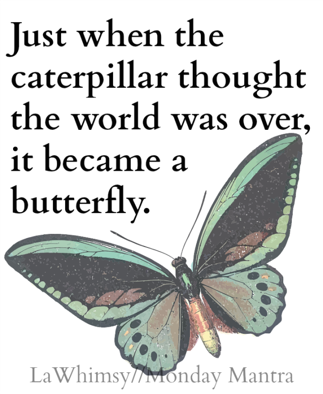 Just when the caterpillar thought the world was over, it became a butterfly. Proverb quote Monday Mantra 103 via LaWhimsy
