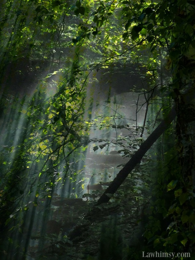 shinrin-yoku forest bathing digital collage via LaWhimsy