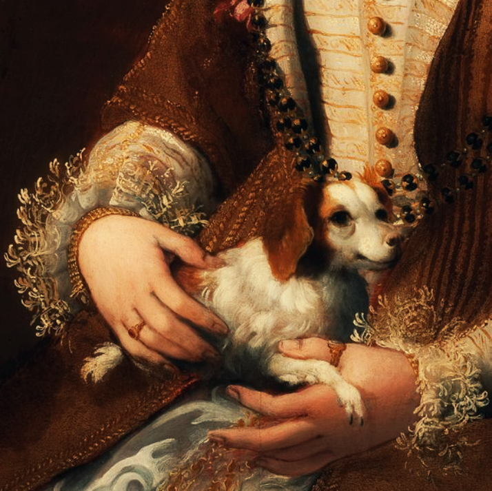 portrait-of-a-lady-with-a-dog-minutiae-detail-by-lavinia-fontana-via-lawhimsy