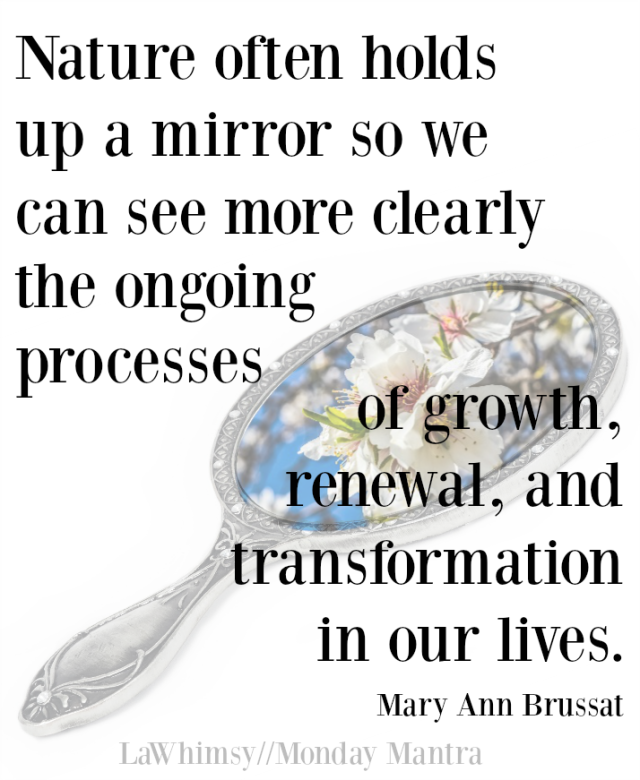 Nature often holds up a mirror Mary Ann Brussat quote Monday Mantra 150 via LaWhimsy