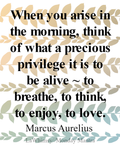 When you arise in the morning Marcus Aurelius quote Monday Mantra 151 via LaWhimsy