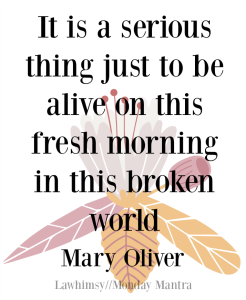 It is a serious thing just to be alive on this fresh morning in this broken world Mary Oliver quote Monday Mantra 161 via LaWhimsy