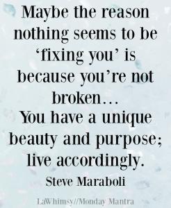 You're not broken...so live accordingly Steve Maraboli quote Monday Mantra 164 via LaWhimsy