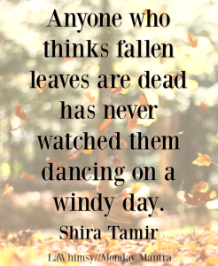 Anyone who thinks fallen leaves are dead has never watched them Shira Tamir quote Monday Mantra 177 via LaWhimsy