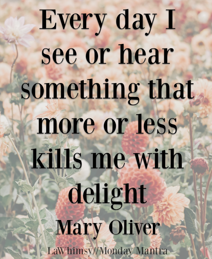 Every day I see or hear something that more or less kills me with delight Mary Oliver Monday Mantra 189 via LaWhimsy