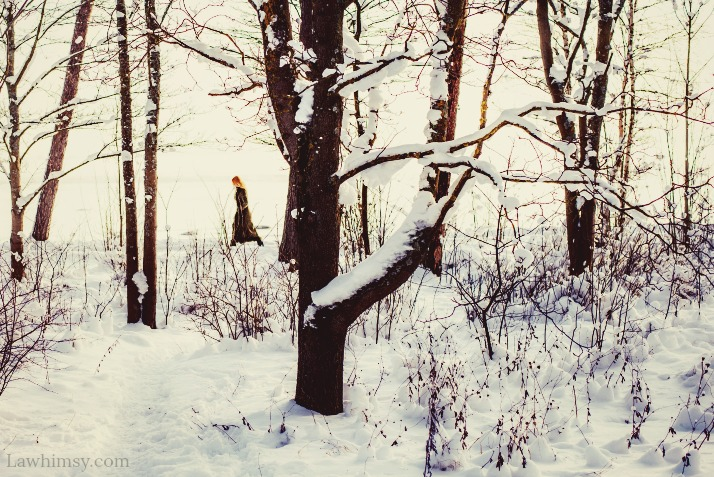 hiemal woodland wanderings via LaWhimsy