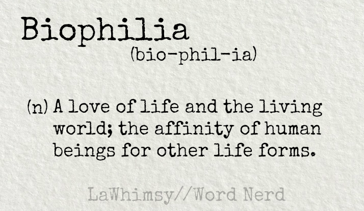 biophilia definition Word Nerd via LaWhimsy