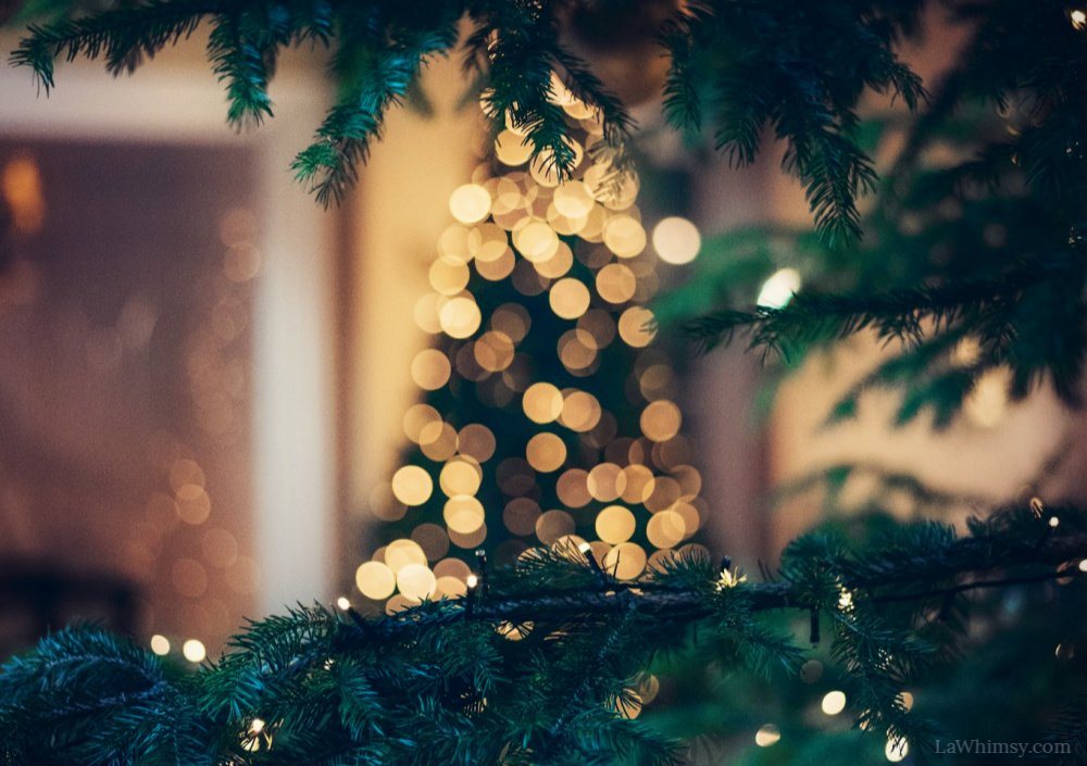 Oh tannenbaum image crop from orginal photo by mourad saadi via LaWhimsy