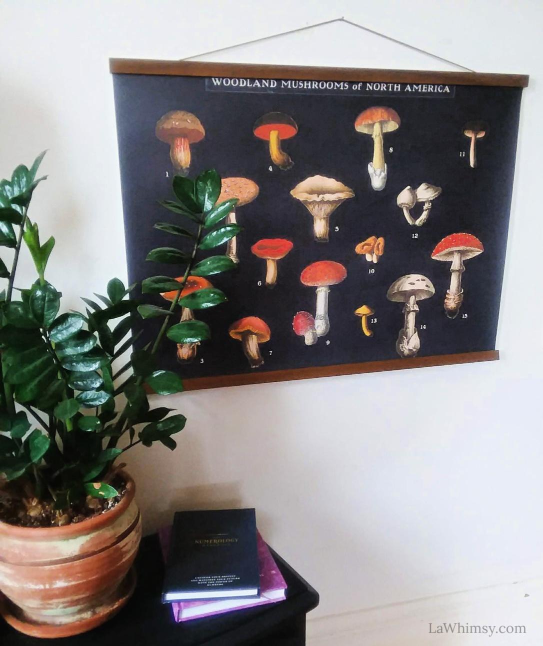 Mushroom Chart Wall Art via PhotoWall on LaWhimsy