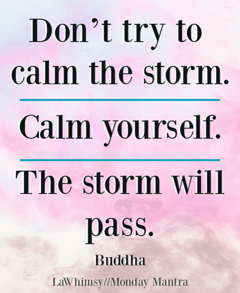 Don't try to calm the storm Calm yourself The storm will pass Buddha quote Monday Mantra 262 via LaWhimsy