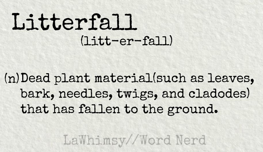 litterfall definition Word Nerd via LaWhimsy